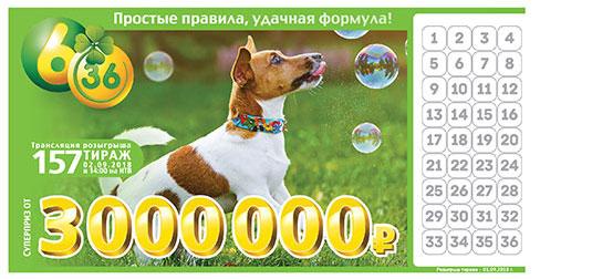 Лотерея 6 из 36 тираж 157 - собака и мыльные пузыри