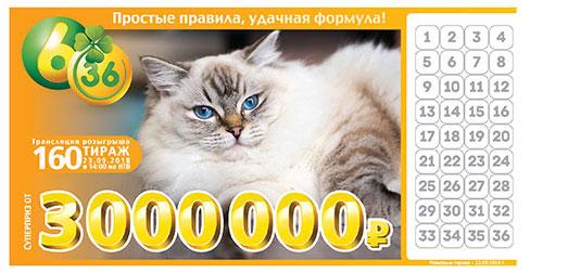 Лотерея 6 из 36 тираж 160 - с персидской кошкой