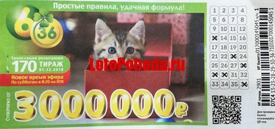 Лотерея 6 из 36 тираж 170 - с котенком